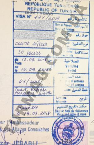 Виза в Тунис. Получение и оформление тунисской визы.